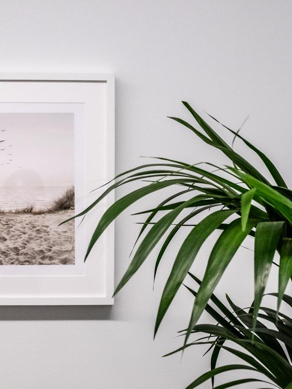 Taulu ja kasvi osana toimistoon sisustusta.
